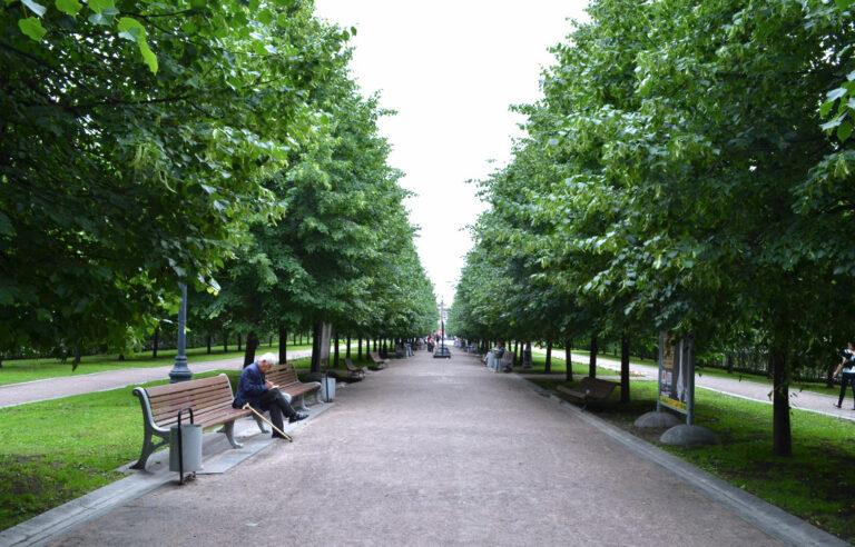 На Смоленщине благоустроят около полусотни парков и скверов