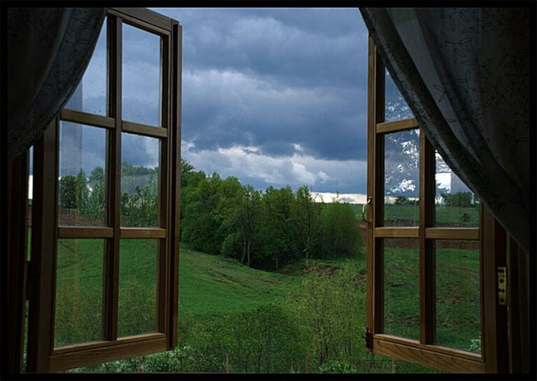 Россия из моего окна