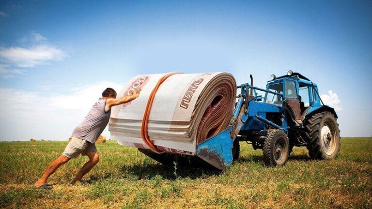 Начинающие фермеры приглашаются   к участию в конкурсе на получение гранта