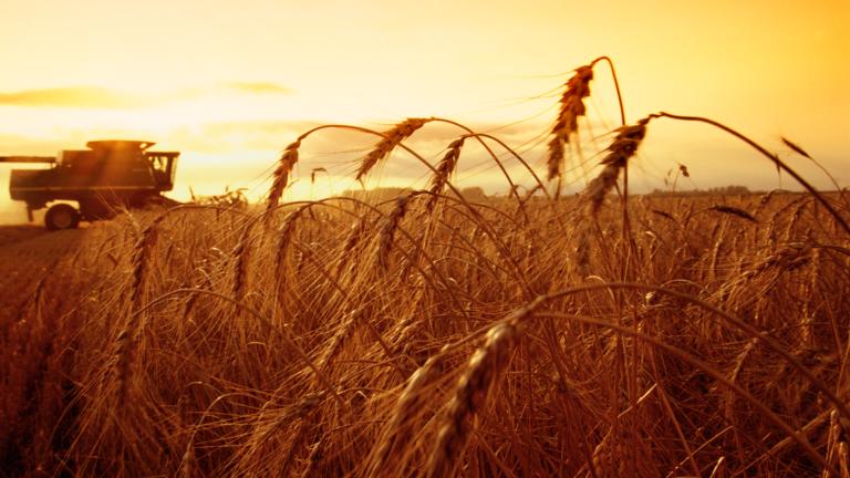 Государственная поддержка аграриям